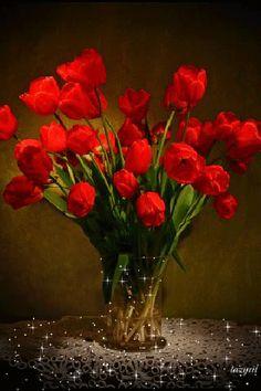GIF Nowy świat - Kwiat GIF - Społeczność - Google+