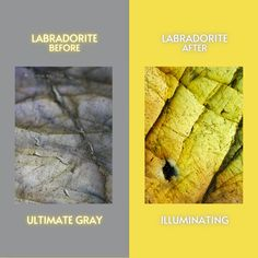"""Which is your fav crystal match for the 2021 Pantone colors of the year, """"Ultimate Gray"""" and """"Illuminating""""? Out of the two 2021 colors, which one do you like the most? Share below! Find gorgeous Labradorite crystals at crystalrockstar.com #crystals #pantone2021 #labradorite #crystallover #pantone #bumblebeejasper #illuminating #ultimategray Bumblebee Jasper: CommonsWikimedia"""