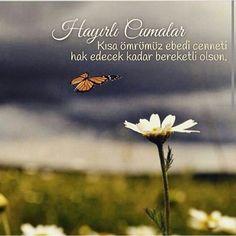 Islamic Quotes, Mystic, Dandelion, Garden, Instagram Posts, Flowers, Plants, Life, Allah