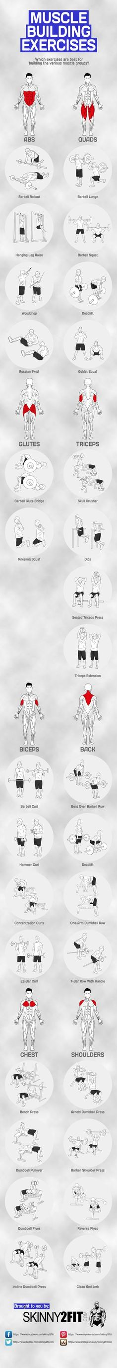 Guia de ejercicios