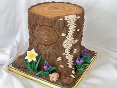 stump cake - awesome detail!
