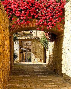 Tuscany..Italy
