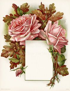 Vintage Printable Pink Roses with Oak Leaves by TheOldDesignShop