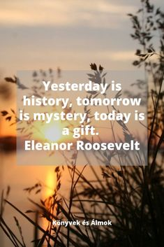Eleanor Roosevelt, Mystery, Wattpad, Quotes, Movie Posters, Quotations, Film Poster, Quote, Shut Up Quotes