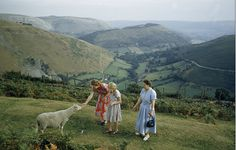 Idyllic: Women pet a shy sheep on a hillside overlooking a green valley in Denbighshire, Wales, pre-coronation England Life Is Like, What Is Life About, Weymouth Beach, Essex Homes, English Village, Green Valley, Home On The Range, English Countryside, Aerial View