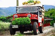 Colombian jeep bringing in the coffee Jeep Willys, Jeepney, Colombian Food, Colombia Travel, Jeep Truck, Jeep Jeep, Natural Park, Jeep Life, Cool Photos