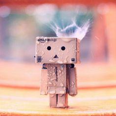 Cardboard Robot, Amazon Box, Danbo, Cute Box, Usb Flash Drive, Rain, Guy, Boxes, Plastic