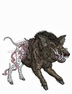 Saehrimnir- Norse myth: a boar that is killed and eaten every night by the gods and the Eingerjar. After the boar is eaten in comes back to life again to provide for the next day.