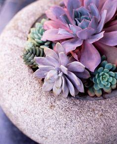 Stock Photo : Floral arrangement