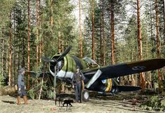 WWII colorized ~ A Finnish Brewster Buffalo 239 fighter of (Squadron) at Selänpää airfield. Colorized by Tommi Rossi from Finland) Brewster Buffalo, Fokker Dr1, Finnish Air Force, Colorized Photos, Colorized History, Ww2 History, Military History, Dog Training School, American Fighter