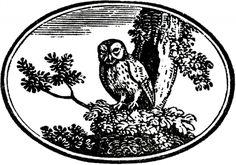 Vintage Owl Label - Halloween-ish! - The Graphics Fairy
