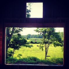 Great view in the CT river valley; from the kitchen in a spec house we are building.