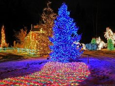 Cool Christmas Lights from around the World