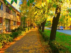 Sombor, Serbia Photo by: Dimitrije Vasilisin