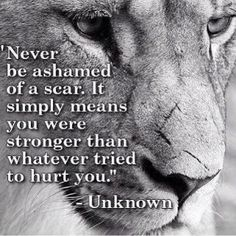 Be proud of where you have been and where you are going. You are stronger than you know. ❤ #Free2Luv #StayStrong
