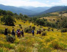 """Conocer la Sierra de Guadarrama a través de """"Los Siete Picos"""" http://revcyl.com/www/index.php/medio-ambiente/item/8005-conocer-la-sierra-d"""