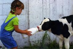 So adorable!! Baby Cows, Baby Fever, Future Baby, Country Girls, Farm Animals, Childhood, Mom, Kids, Young Children