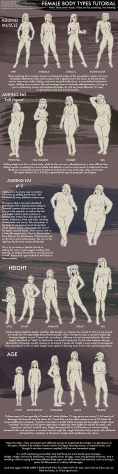 Female Body Types Tutorial by Phobos-Romulus.deviantart.com on @deviantART
