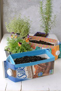 Milk Carton Herb Gardens #EarthDayHyattRegencyMonterey