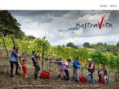 NostraVita: my family's winery!!!
