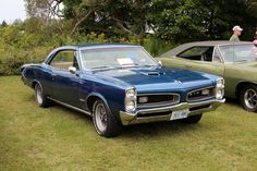 1966 Pontiac GTO hardtop Aussie Muscle Cars, Old Muscle Cars, American Muscle Cars, 67 Gto, Gto Car, Car Man Cave, Pontiac Cars, Cars Motorcycles, Vintage Cars
