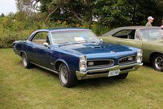 1966 Pontiac GTO hardtop Aussie Muscle Cars, American Muscle Cars, 67 Gto, Gto Car, Pontiac Cars, Super Sport Cars, Vintage Cars, Cool Cars, Dream Cars
