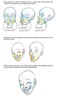 face tutorial/reference