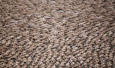 Daniel Aguilar / Reuters Thousands of naked volunteers pose for U.S. photographer Spencer Tunick at Mexico City's Zocalo square on May 6, 2007. A record 18,000 people took off their clothes to pose for Tunick in the heart of the ancient Aztec empire.