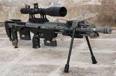 DSR Precision DSR-1 sniper rifle