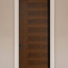 Contemporary Wood Doors Interior