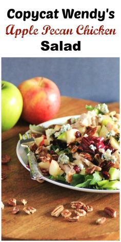 Copycat Wendy's Apple Pecan Chicken Salad by Noshing With The Nolands gives you a great salad to have at home, dressing and all!