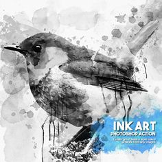 ink art, add-on, photoshop action.