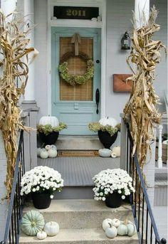 Front door with blinds