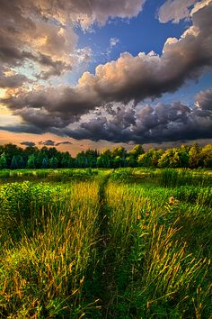 Another Way - Wisconsin Horizons by Phil Koch. Lives in Milwaukee, Wisconsin, USA. https://www.facebook.com/MyHorizons