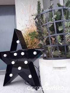 Ogród tworzę nowoczesny czyli wewnętrzna walka jak nie zostać kokoszką :)