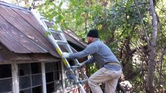 Going back to remove old signs used as roofing on abandoned farmstead buildings