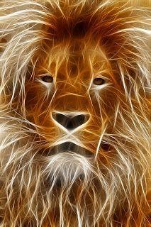 Kruse, Max, Der Löwe ist los | mopsmaschine