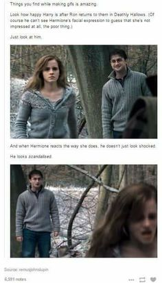 Harry's like I SHIP IT!!! Then he sees Hermione and is like NOOO YOU RUNIED THE SHIP!!!!