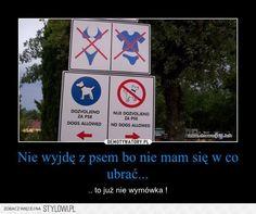 Kreacja modowe na Stylowi.pl