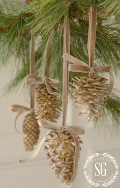 give pine cones a beautiful bleached look, Christmas decorations, crafts, seasonal holiday decor Sou Noel Christmas, Rustic Christmas, All Things Christmas, Winter Christmas, Cheap Christmas, Vintage Christmas, Stone Gable Christmas, French Christmas Decor, Pine Cone Christmas Tree
