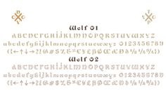 NT Wolf typeface