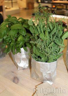 Kahvipusseista syntyy taitavan käsissä vaikka mitä! Tässä suunnittelija Jatta Palovuoren tuote Koppa Trash Cuisine -alueella. Herbs, Plants, Food, Essen, Herb, Meals, Plant, Yemek, Eten
