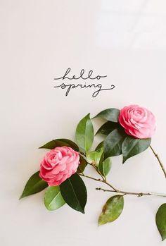 hello spring --- http://tipsalud.com -----
