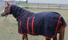 Horse Blankets Red