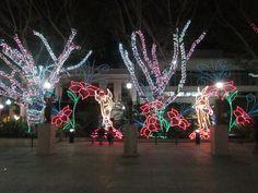 Plaza de Colon 4