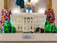 The State Dining Room is also home to the traditional White House gingerbread house replica. This year's creation weighs approximately 300 pounds and took members of the White House pastry team several weeks to construct. The home features a mini Bo (left) and Sunny (right) sitting on the front lawn, as well as a functioning replica of the North Lawn fountain.