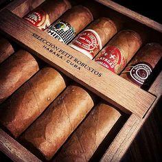 Fine collection of petite robusto's Cuban cigars - Seleccion petit robustos . H Upmann, Cohiba, Romeo Y Julieta, Partagas and Montecristo