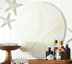Oversized sand dollar wall decor