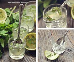 Mojito jelly shot – spanish recipe