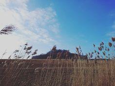 Jen příroda ví, co chce . . . #sunnyday #springiscomming #landscape #nas_svet #nature_shooters #czech_vibes #czechnature #naturelovers #bluesky #suninmind #vibes #view #nature #folk #folksouls #folklife #fotkyplnekysliku #now #trip #outdoors #outdoorliving #withlove #livefortoday #bohemia #wanderlust #wanderfolk #amazingplaces #hill #happy #clouds #happy